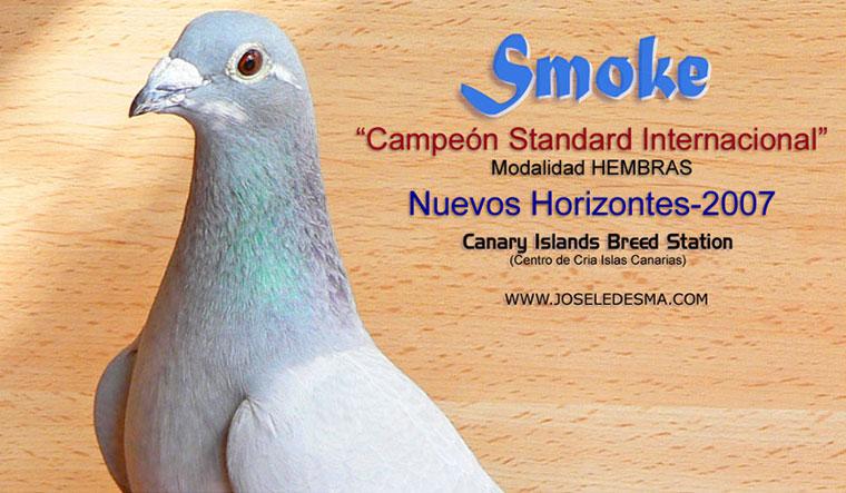 smoke-8x.jpg