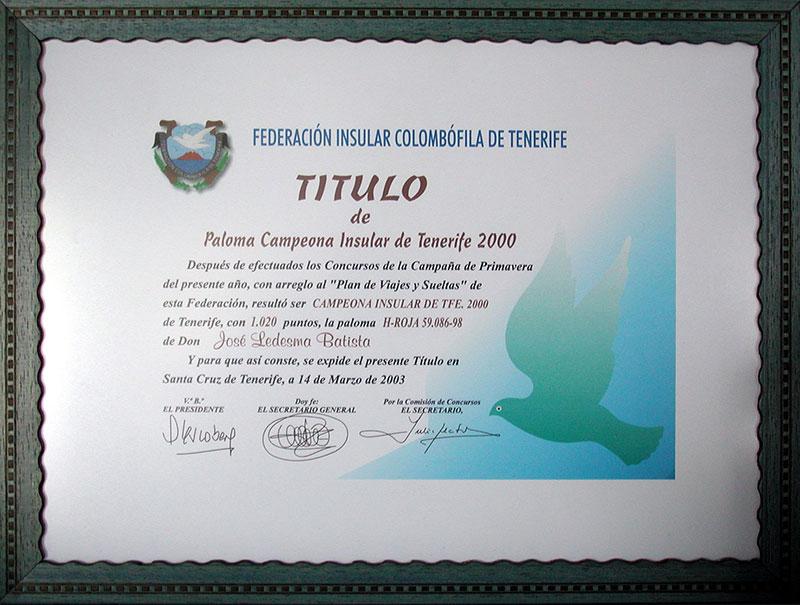 campeona-insular-2000.jpg
